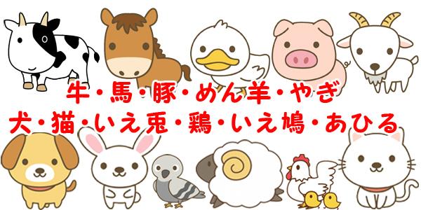 愛護動物「牛、馬、豚、めん羊、やぎ、犬、ねこ、いえうさぎ、鶏、いえばと及びあひる」