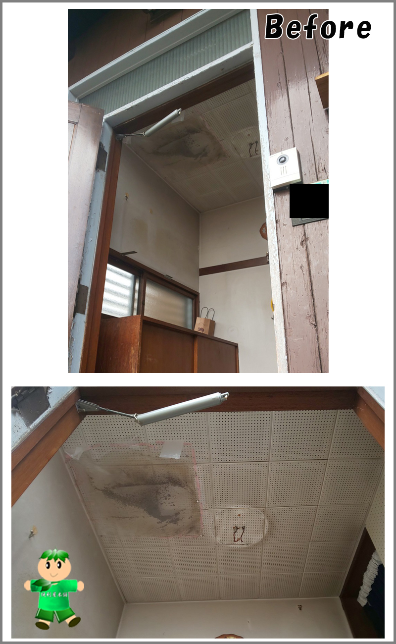 天井裏に入り込んだタヌキの死骸回収:作業前